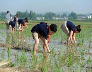 【政策】中共陕西省委 陕西省人民政府印发《关于全面加强新时代大中小学劳动教育的若干措施》的通知